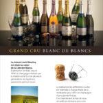 Roll'up pour le champagne Louis Massing à Avize